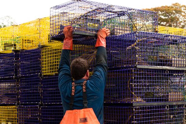 lobster load_rockport boatyard-0082.jpg