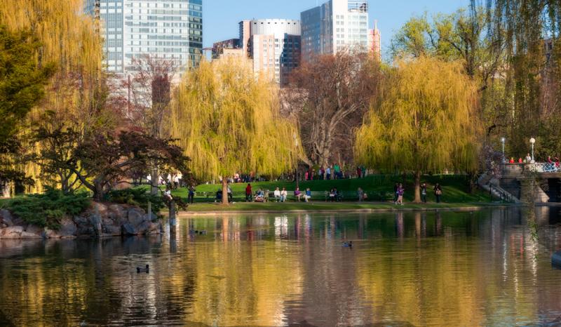 Public Garden - Peace_DSC2165 V2.jpg