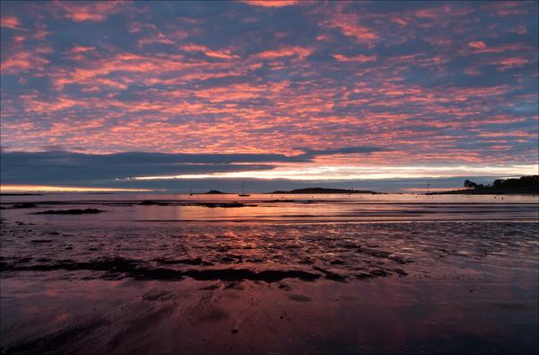 Biddeford Pink_Biddeford Sunrise-_DSC2607-Edit Stroke.jpg