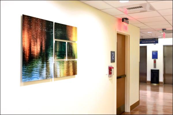 College Pond: Saint Anne's Hospital