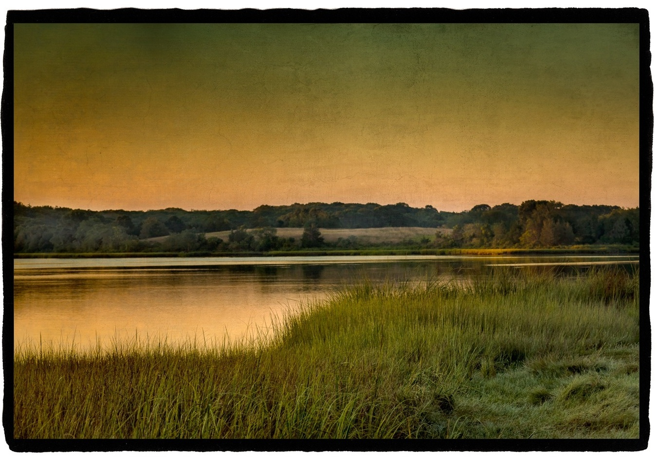 Close to Home: River Dawn Archival pigment print on vellum with white gold