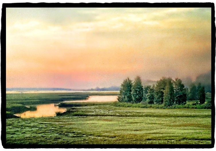 Close to Home: Marsh Dawn Archival pigment print on vellum with white gold