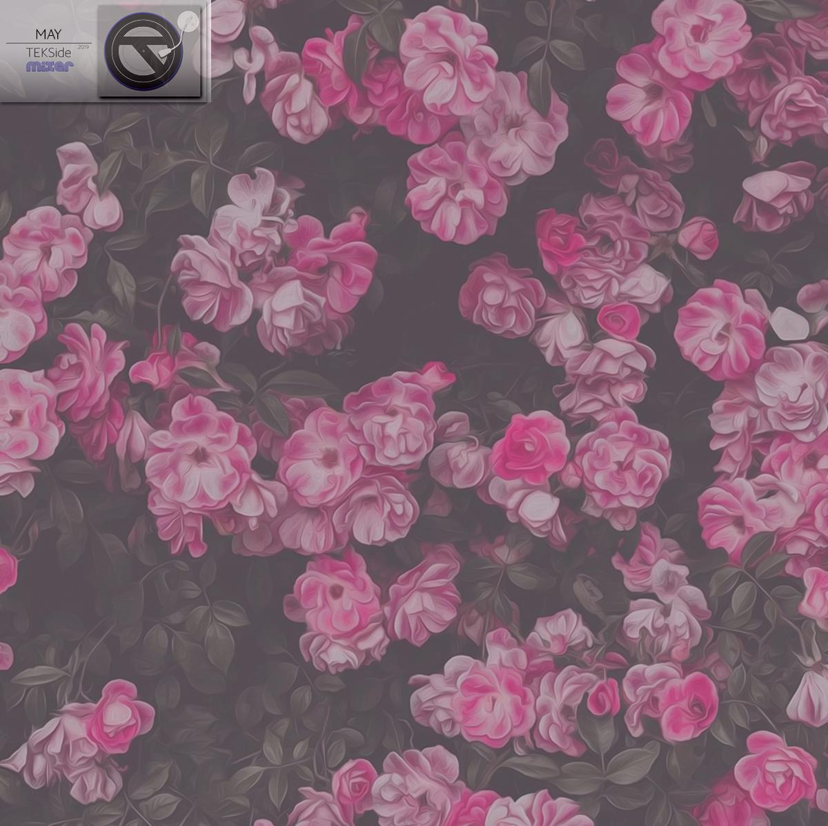 AlbumCoversMay18.jpg