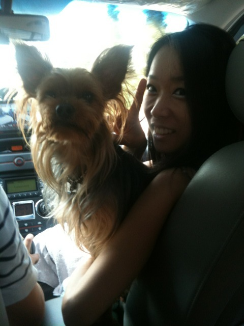 On our way to Gangwon-Do Nr N Korea^^