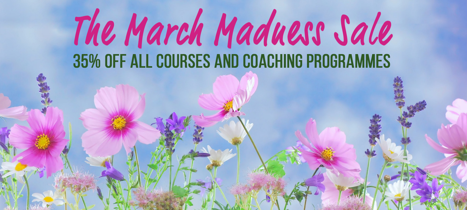 March Madness Sale website Banner.jpg