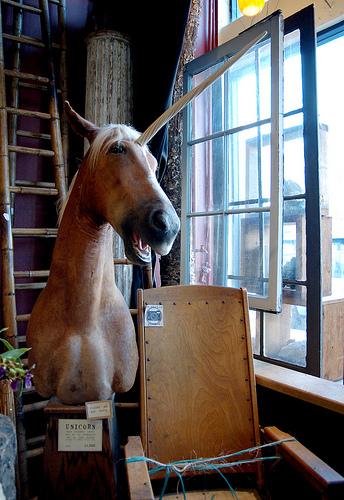Saturday Night Unicorn Taxidermy