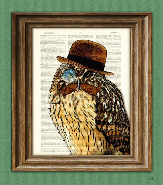 Twelve Superb Owls