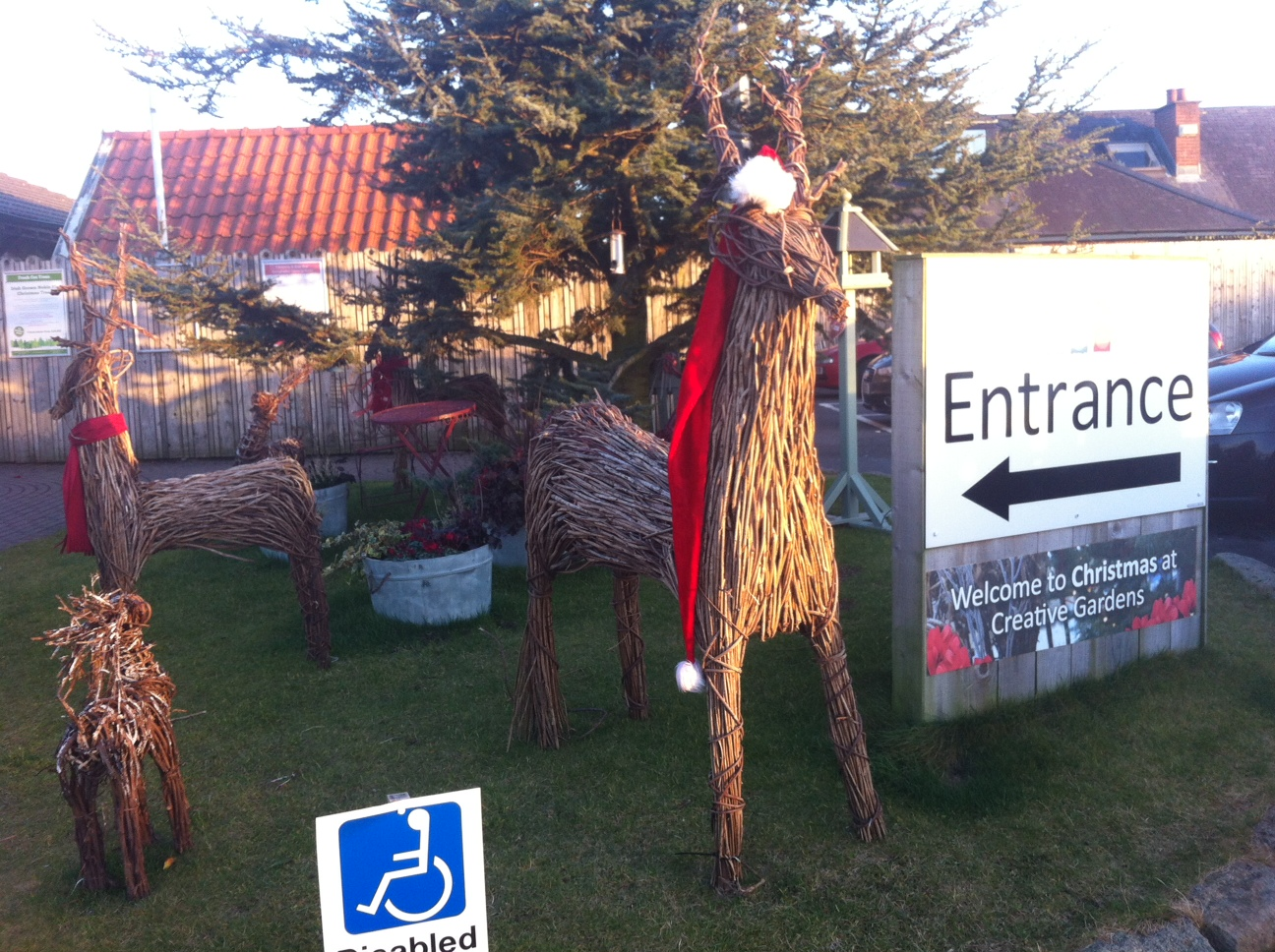 Christmas at Creative Gardens, Donaghadee, N.Ireland