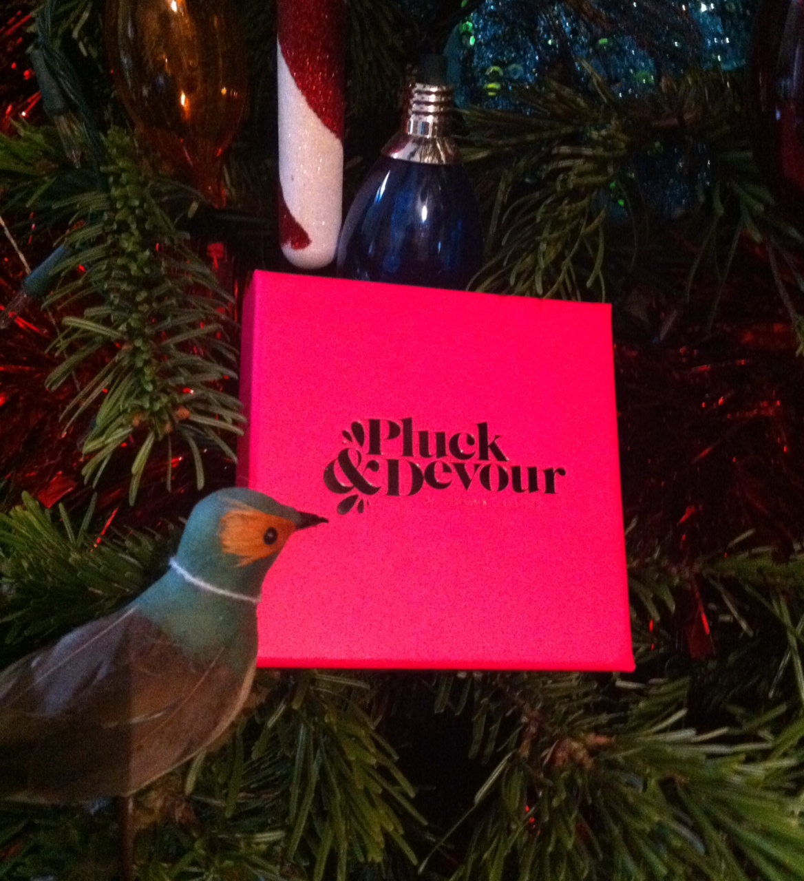 Pluck & Devour For a Last Minute Gift Idea with No Need to Wait for Shipping!