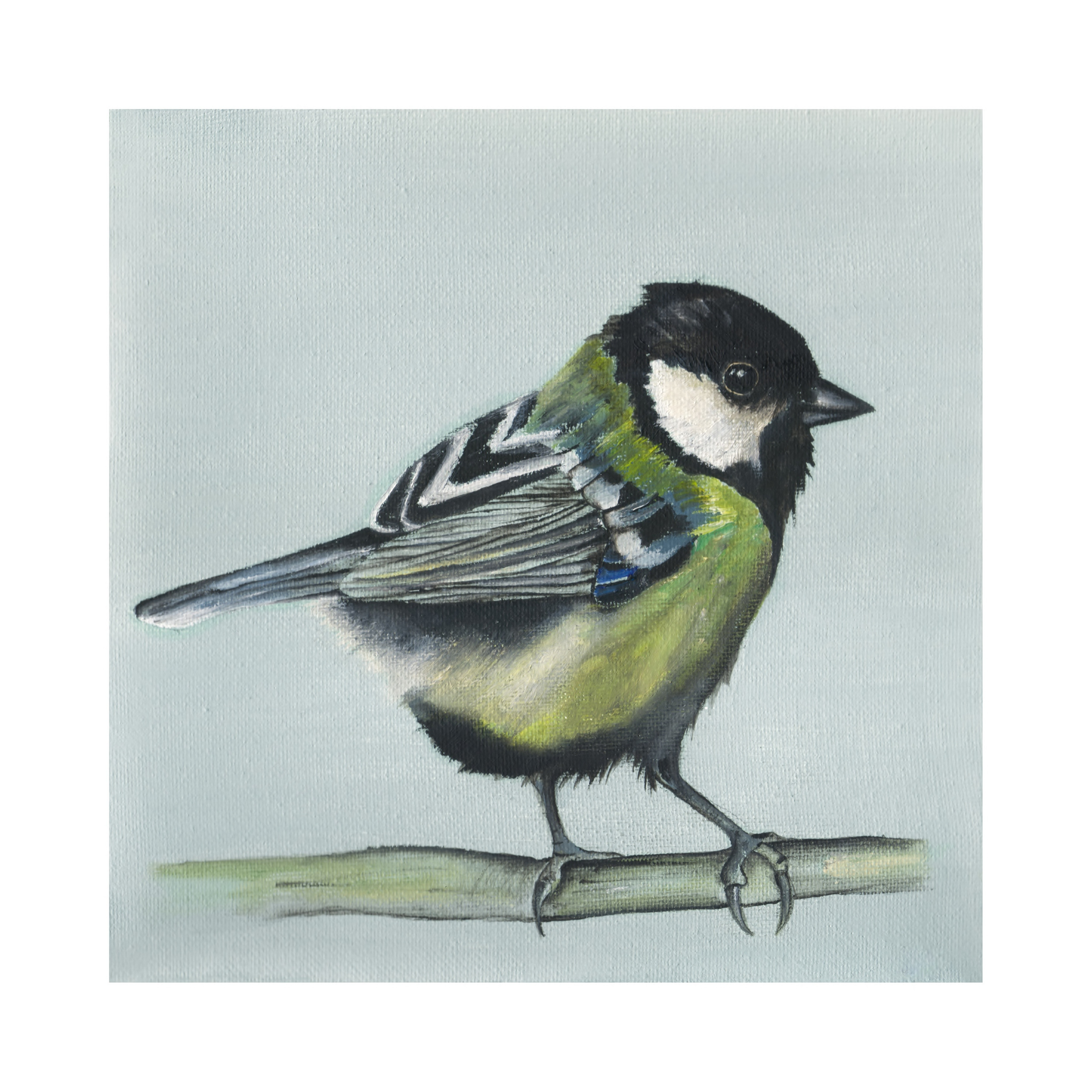 Dollybirds Art
