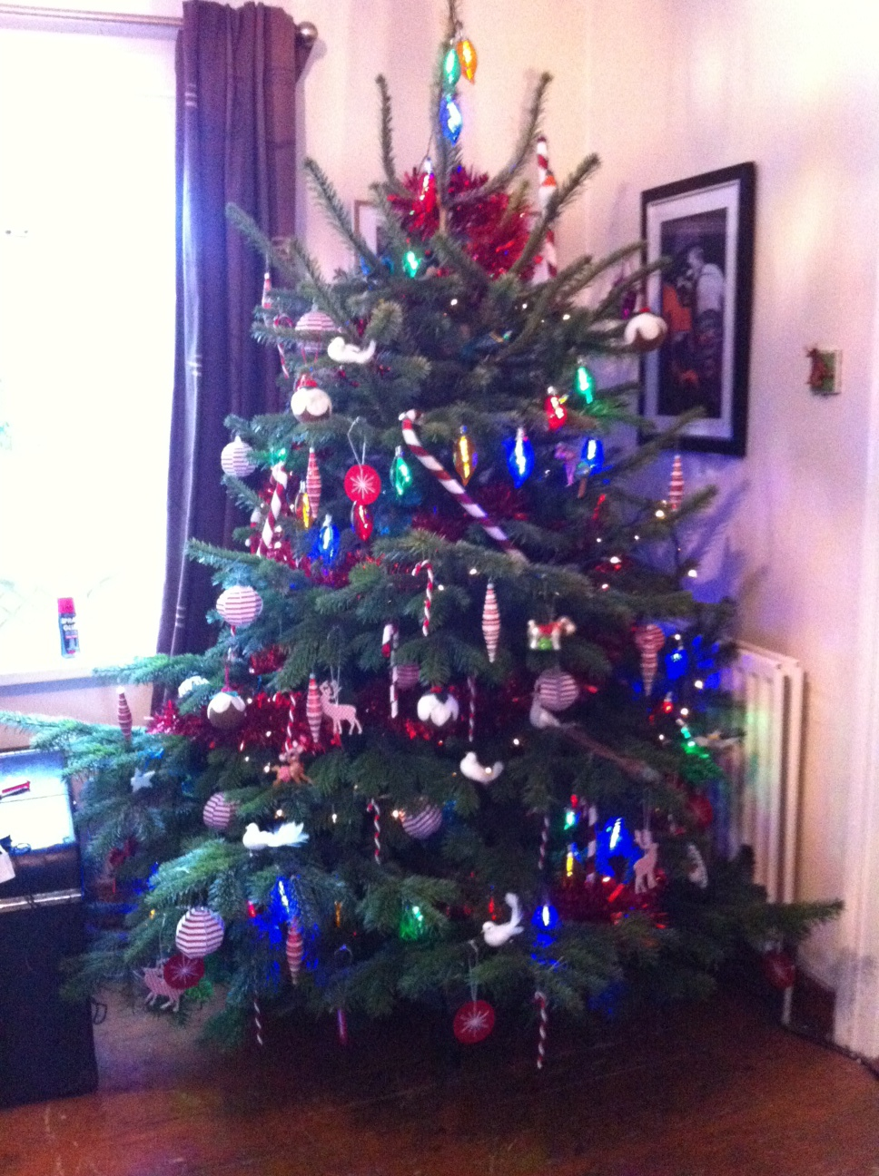 £25 Real Christmas Tree from Ikea, Belfast- Comes With £20 Voucher to spend in January!