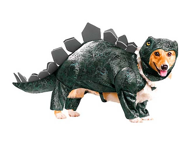 Indiana Bones & Other So-bad-they-are-good Dog Costumes