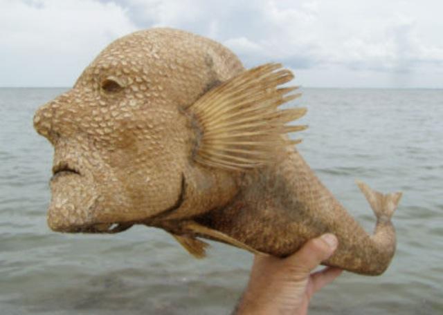 Weird Fish Monster 7