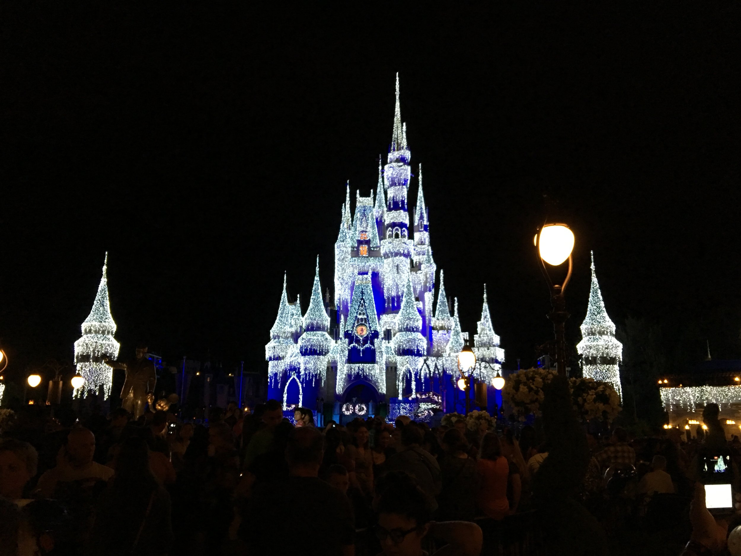 Cinderella's Castle Frozen