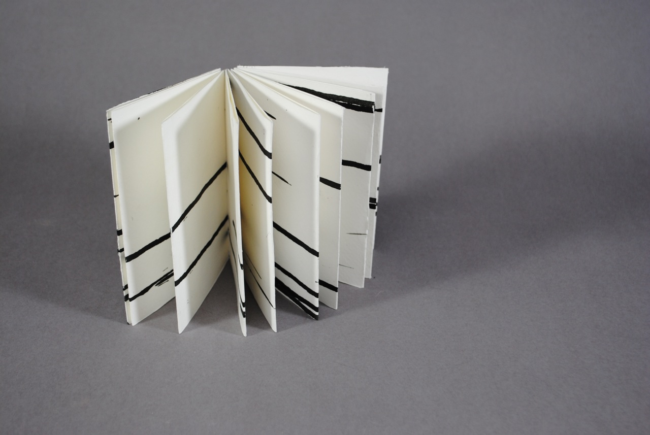 Steadman4_Accidental Composition Book.jpg