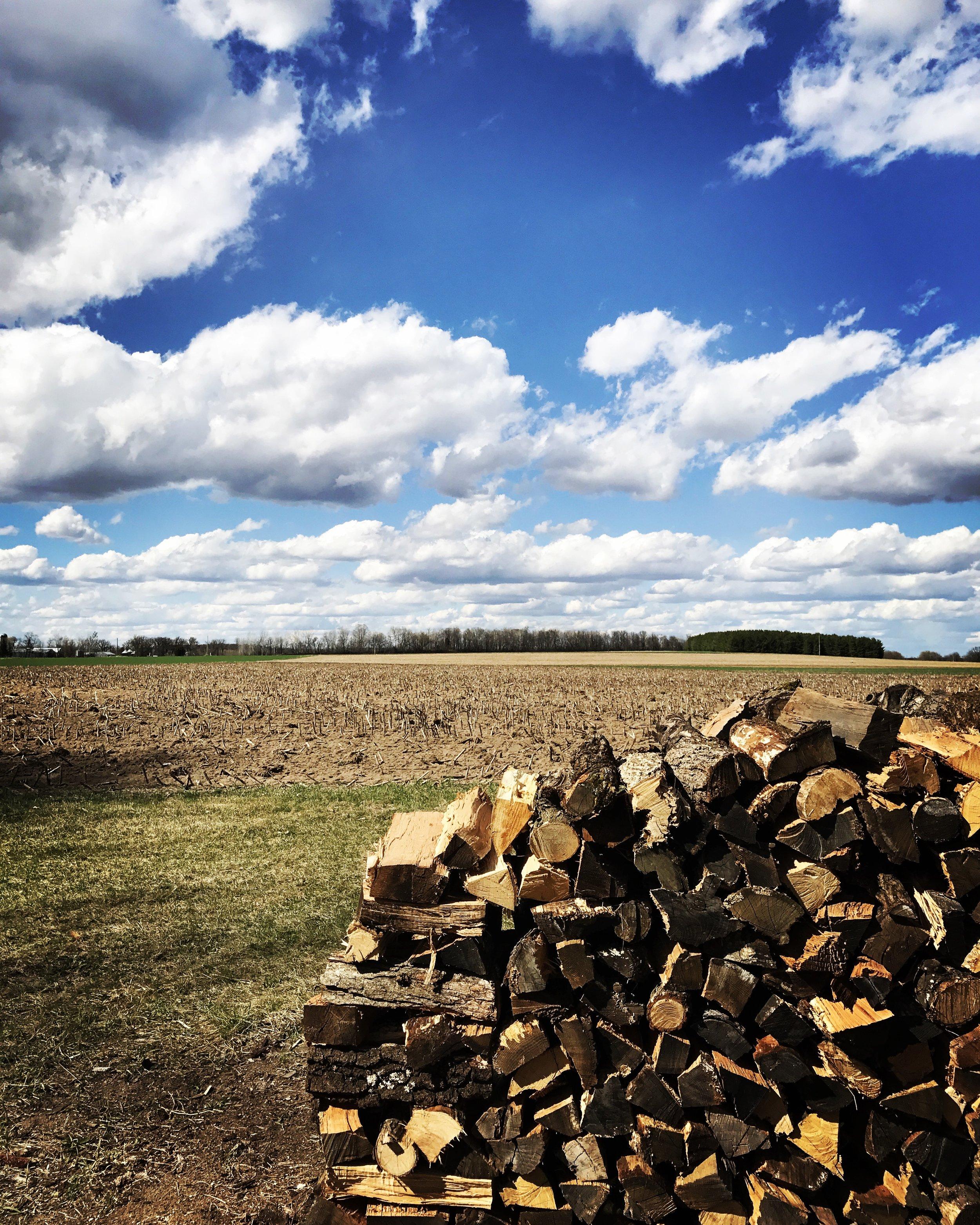 Hard working German, my dad, stacks wood as his regular workout.