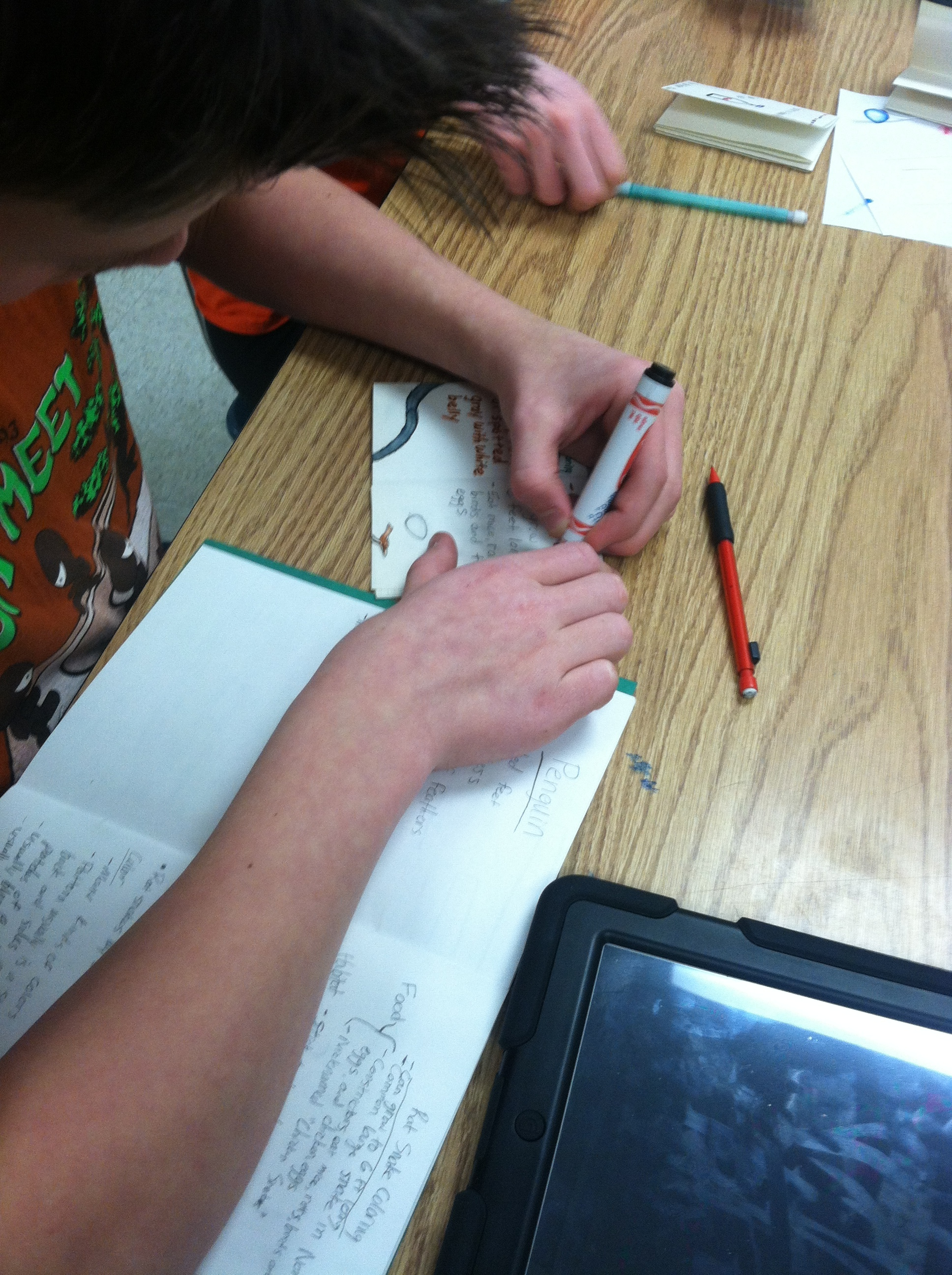 Visual Journaling & STEM   Slowing down just enough to draw an image will help learners with content retention and long term comprehension. Visual Journaling is a great method of learning for the sciences because it is grounded in the action of observation.