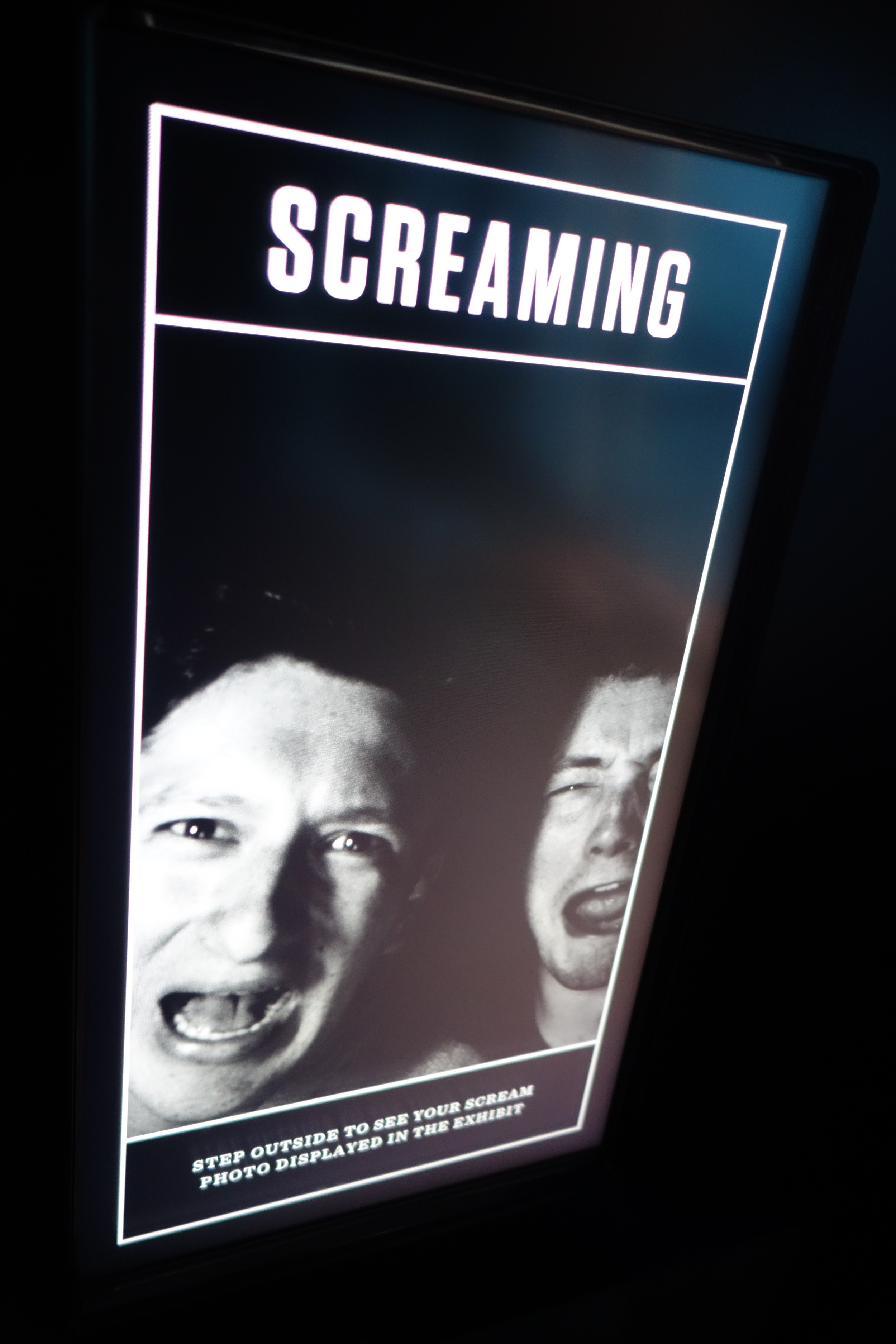 DSC00953 Screaming with Richard.JPG