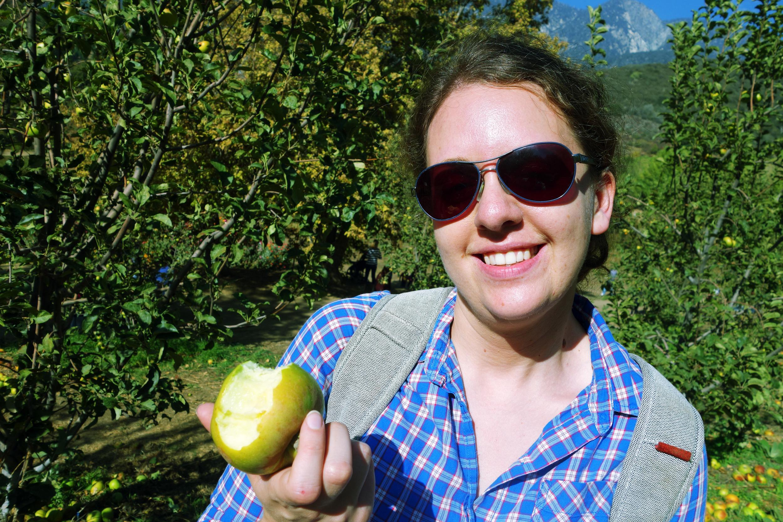 DSC01999 Erica's Apple.JPG