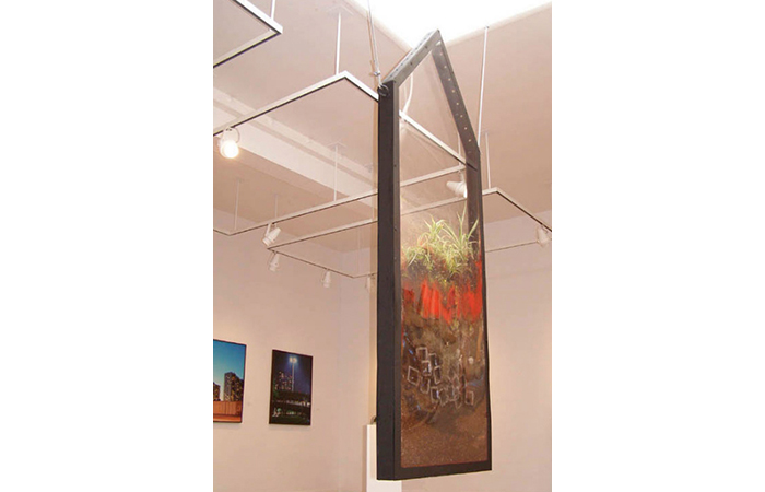 Kim Holleman, The View, Glass, Wood, Plants, Dirt, Dimensions Varied, 2009  ​