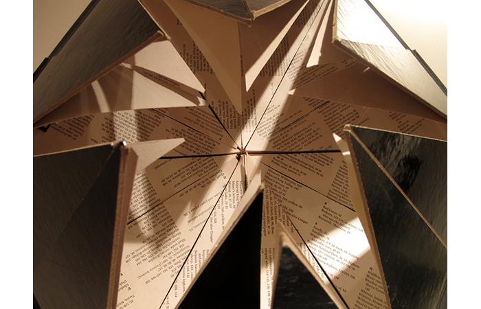 Ellen Robin Rosenberg, Time, Life; Nature Library, Paper, Cardboard, Dimensions Varied, 2012