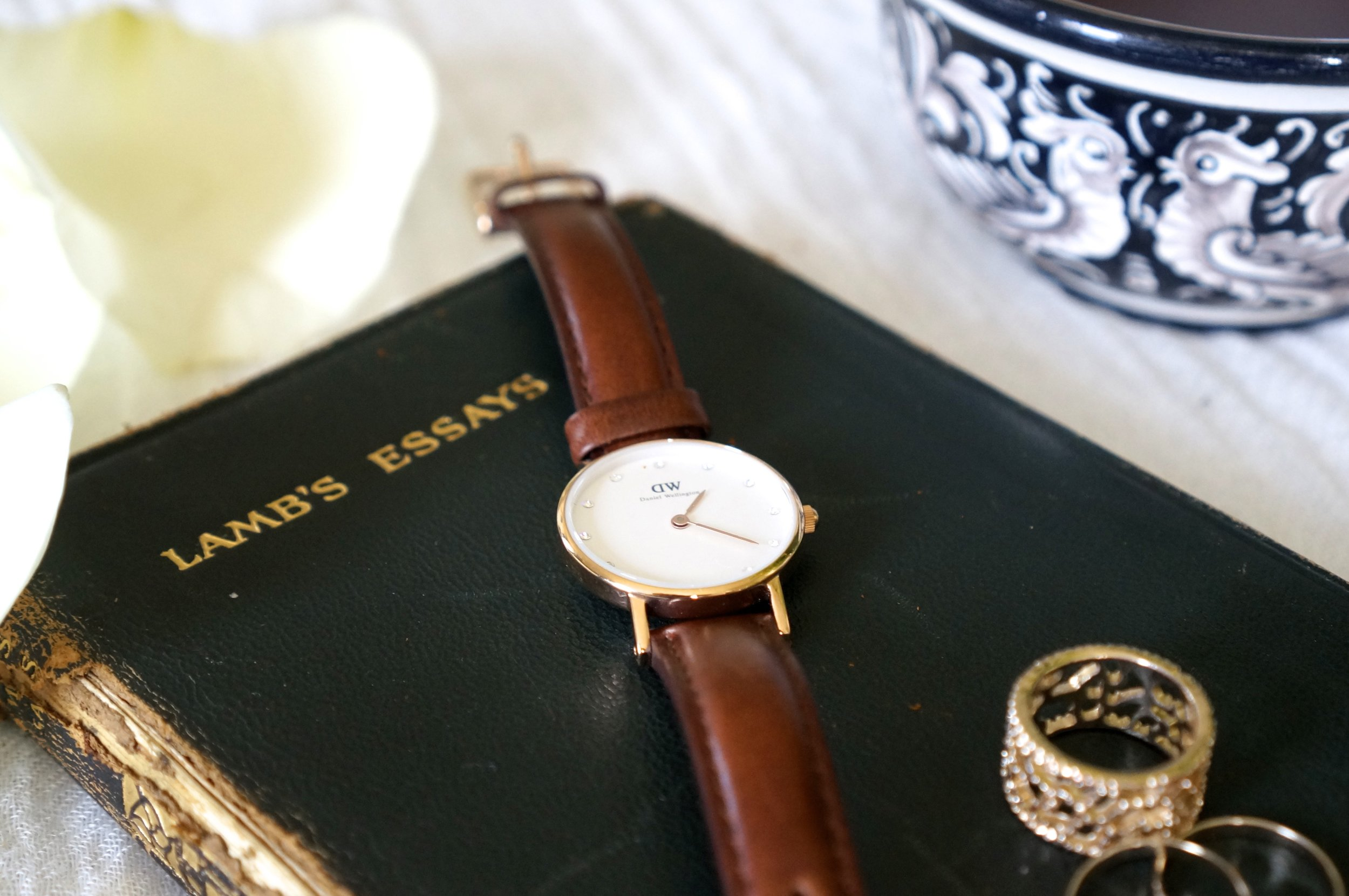 daniel wellington honey & velvet.jpg