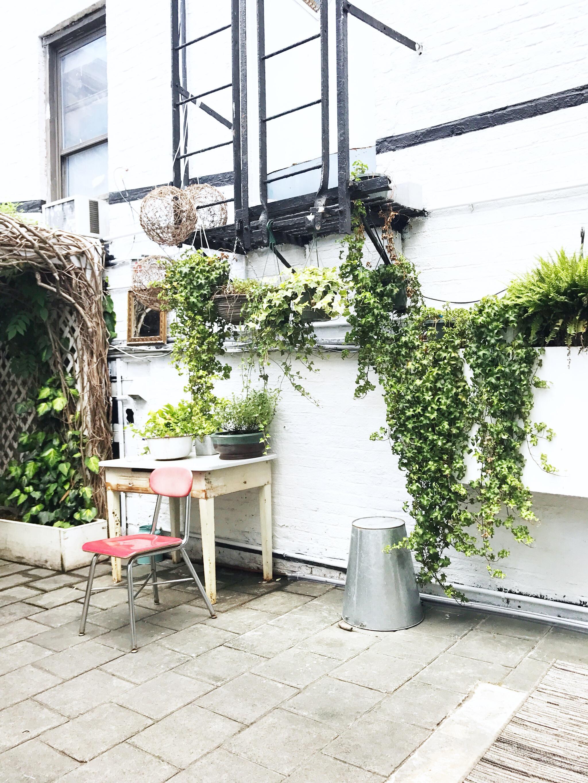 loosie's kitchen garden