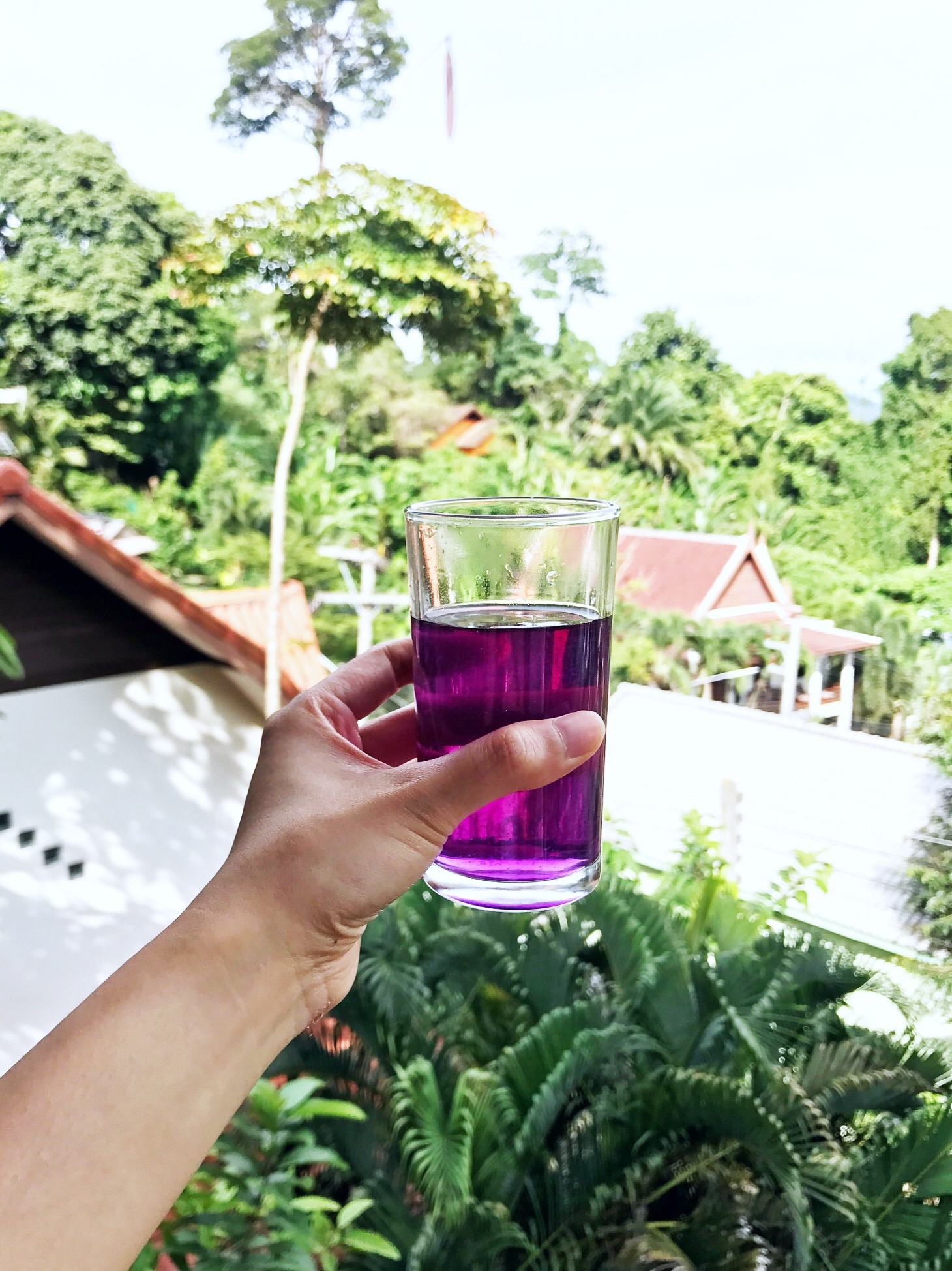Butterfly pea flower tea with lemon