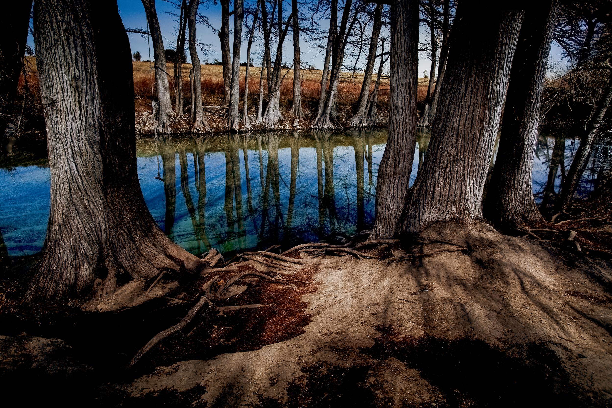 Medina River Cypress-1825-lightroom sharpened-Hero-Edit-Edit-2.jpg