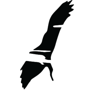 BIRD ONLY LOGO TRANSPARENT copy.png