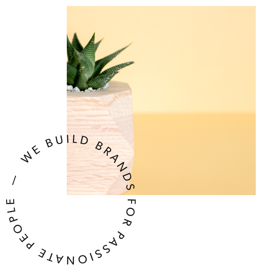 ficus-creative-studio-2018-website-build-13.png