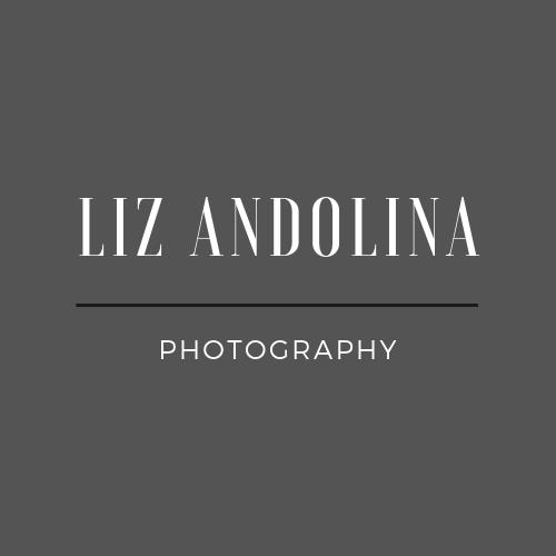 Liz Andolina3 (2).png