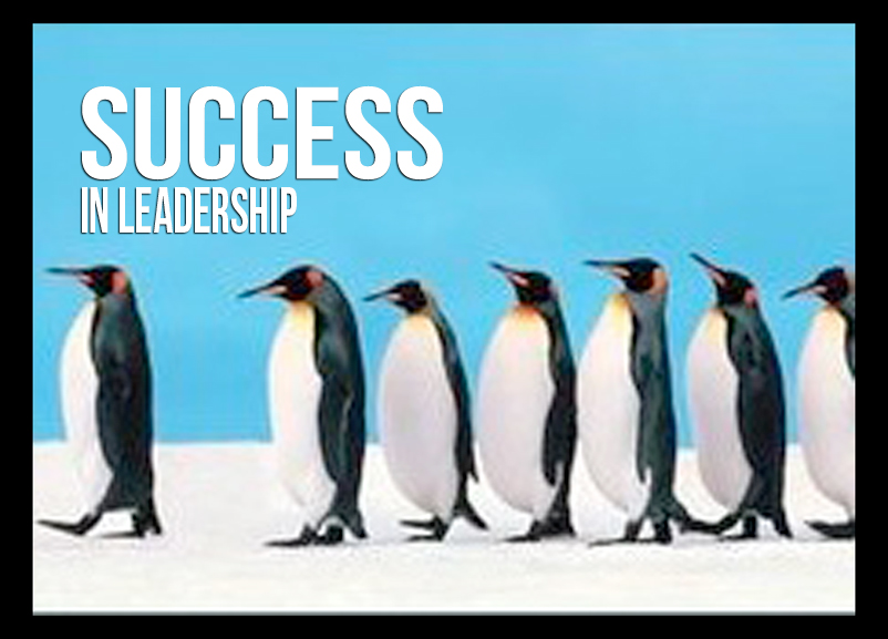 peguin  leaders success.jpg