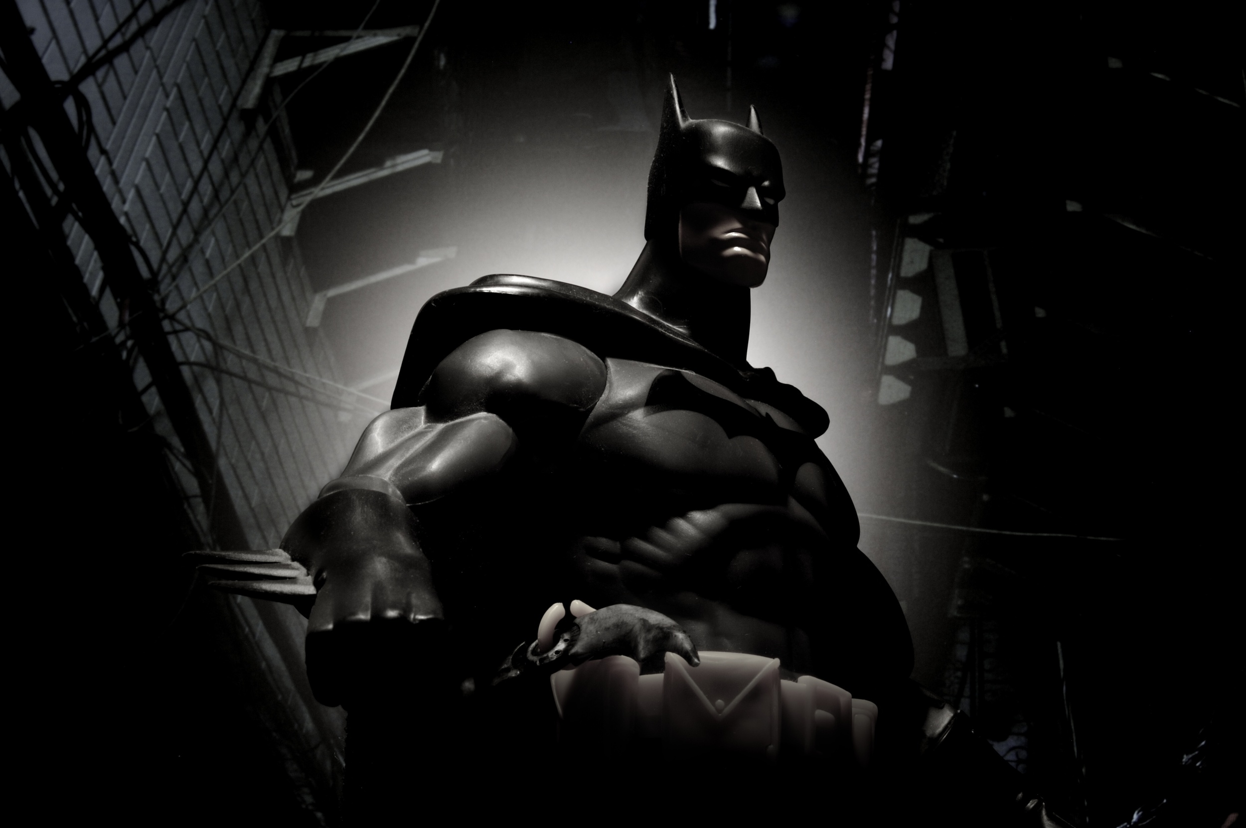 Batman-Spotlight.jpg