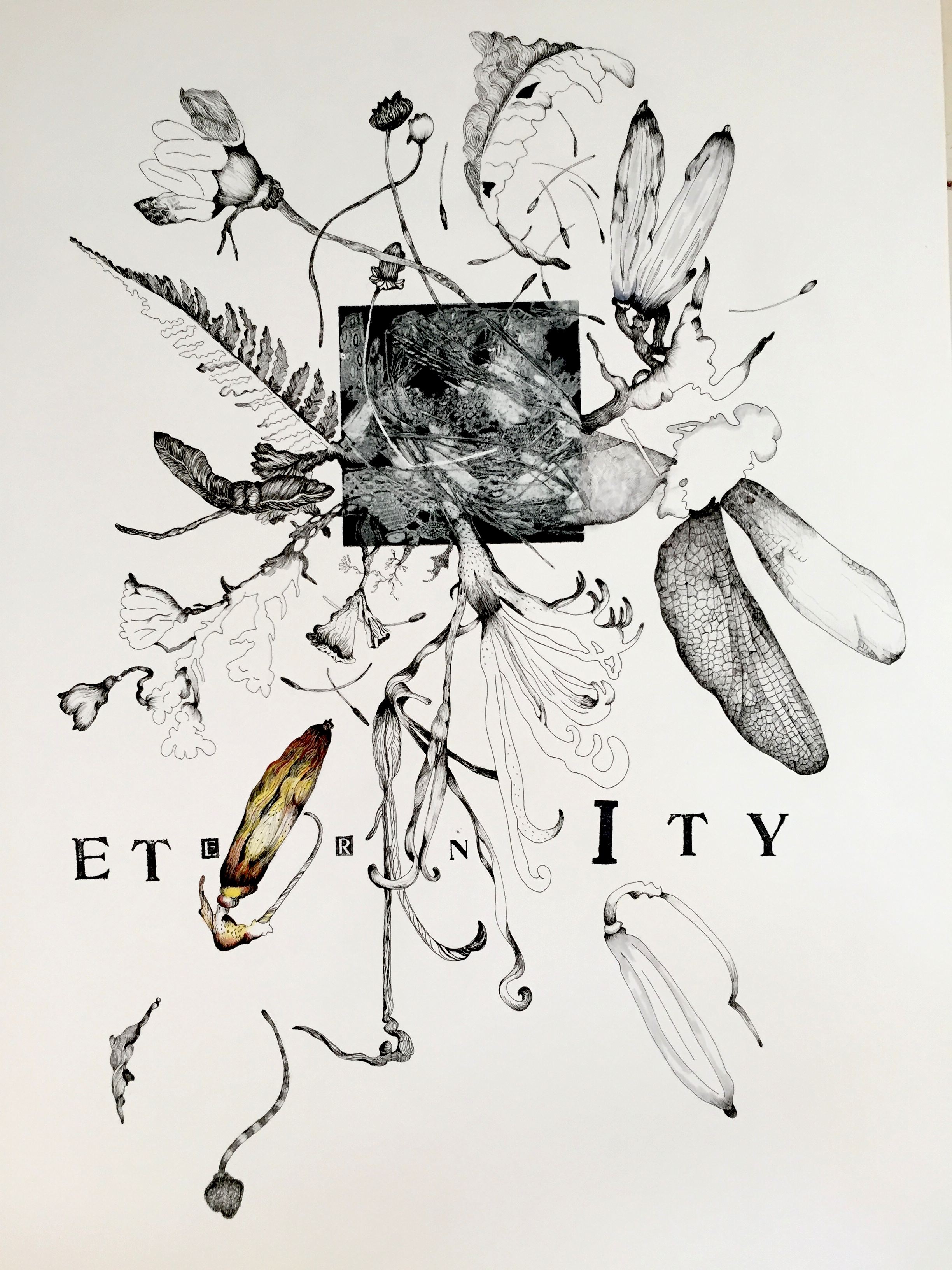 Eternity   23 x 30 inches  mixed media  image: Susan Webster   hand stamped text:Stuart Kestenbaum   2015