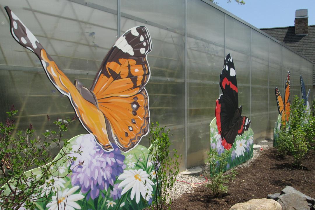 butterfly-mural-1.jpg