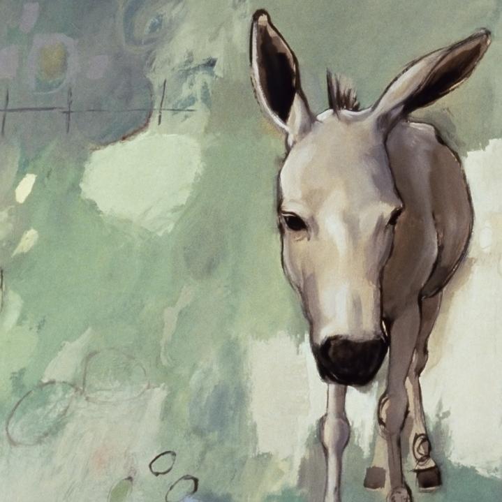 Donkey Series