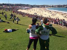 city 2 surf net 2.jpg