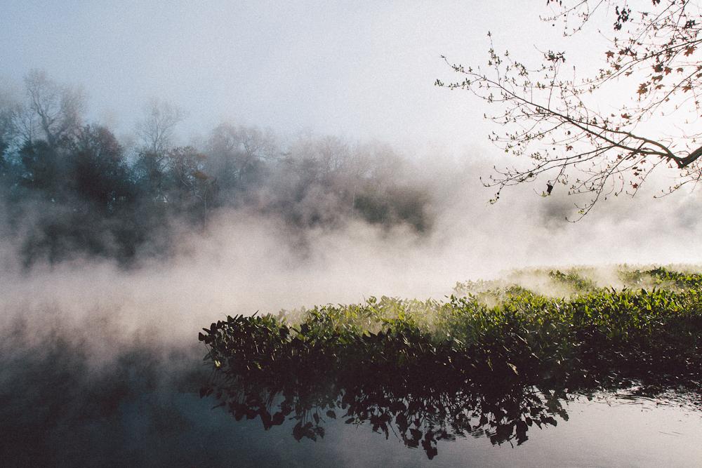 foggy-springs