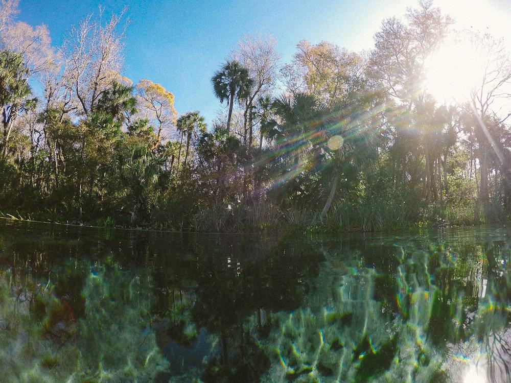florida-springs