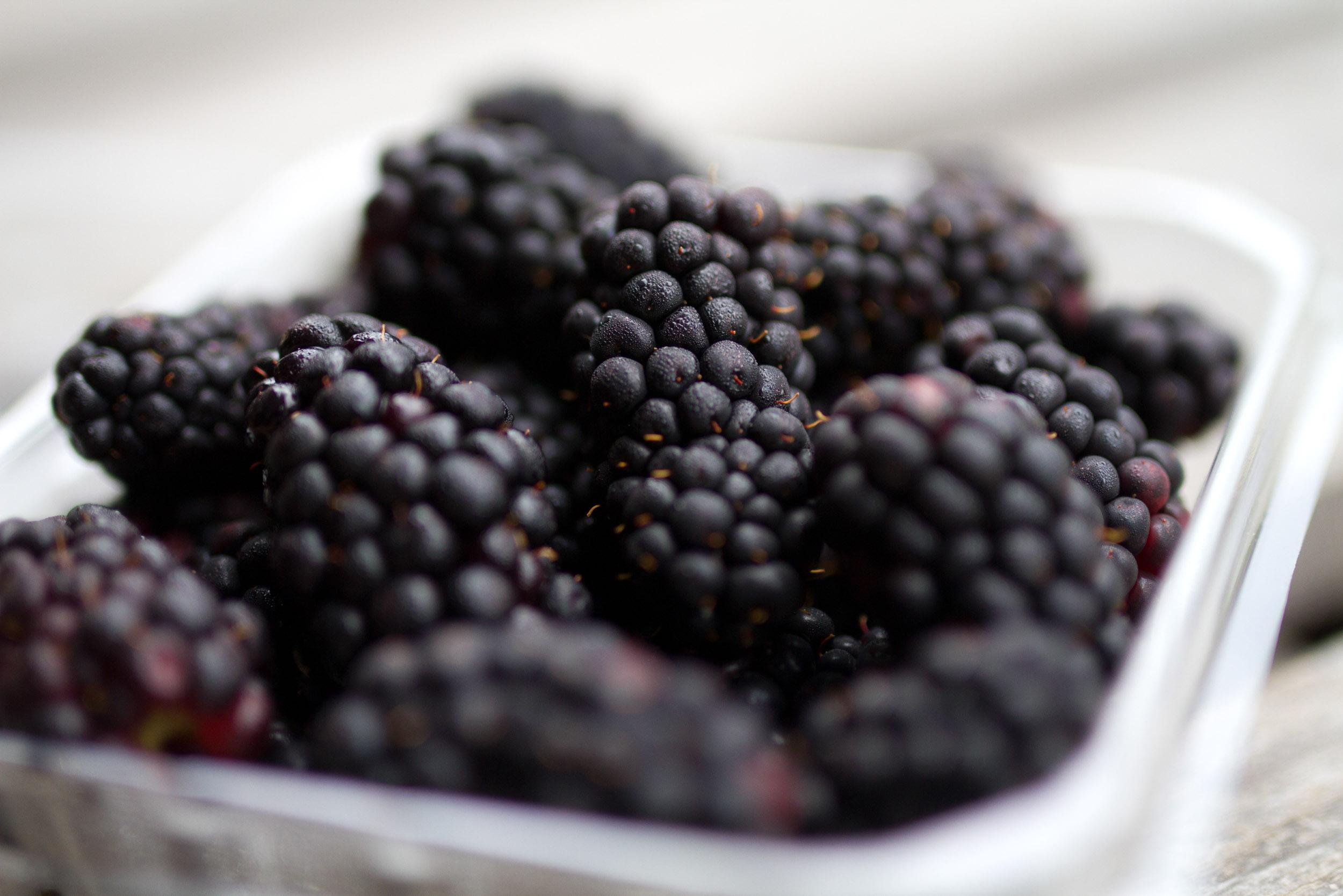 Zone7_Blackberries3.jpg
