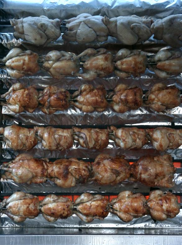 @poulets.jpg