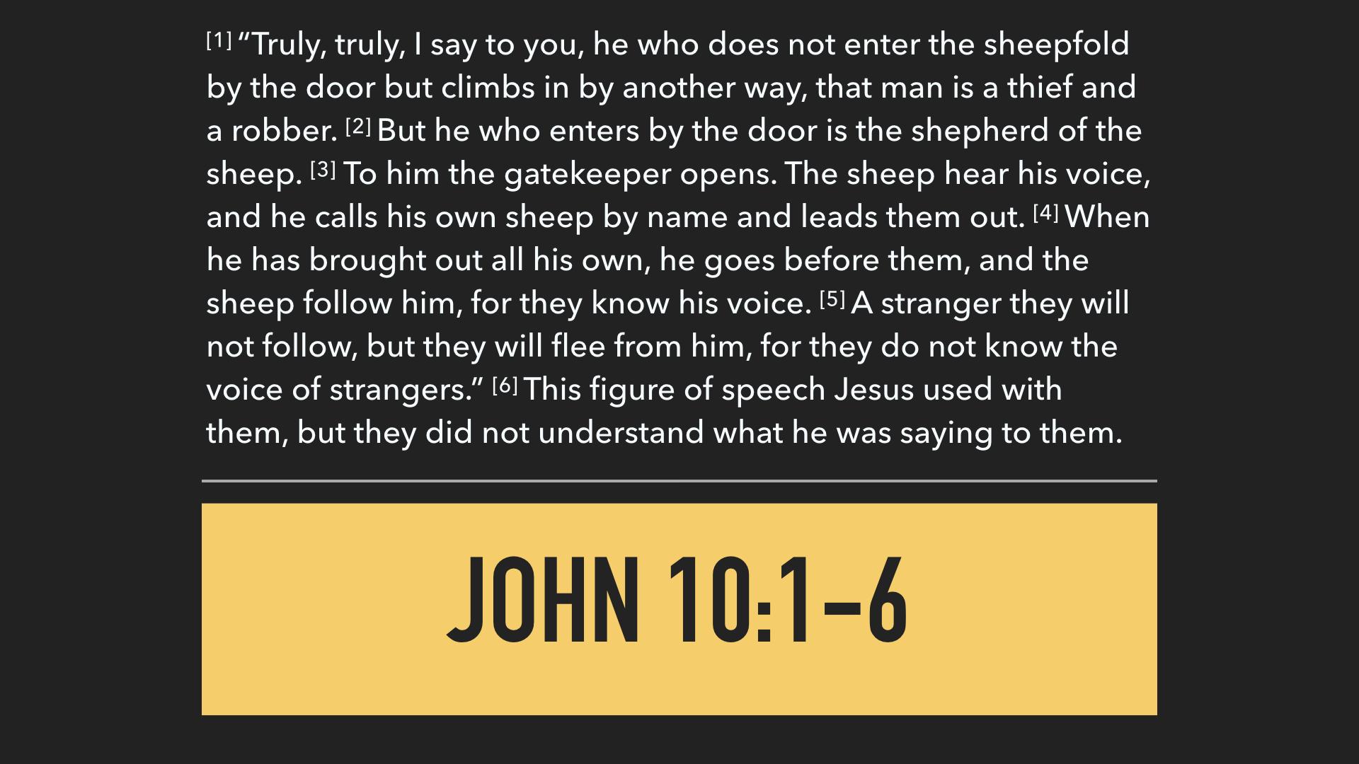 John 10:1-21 I AM The Good Shepherd .003.jpeg