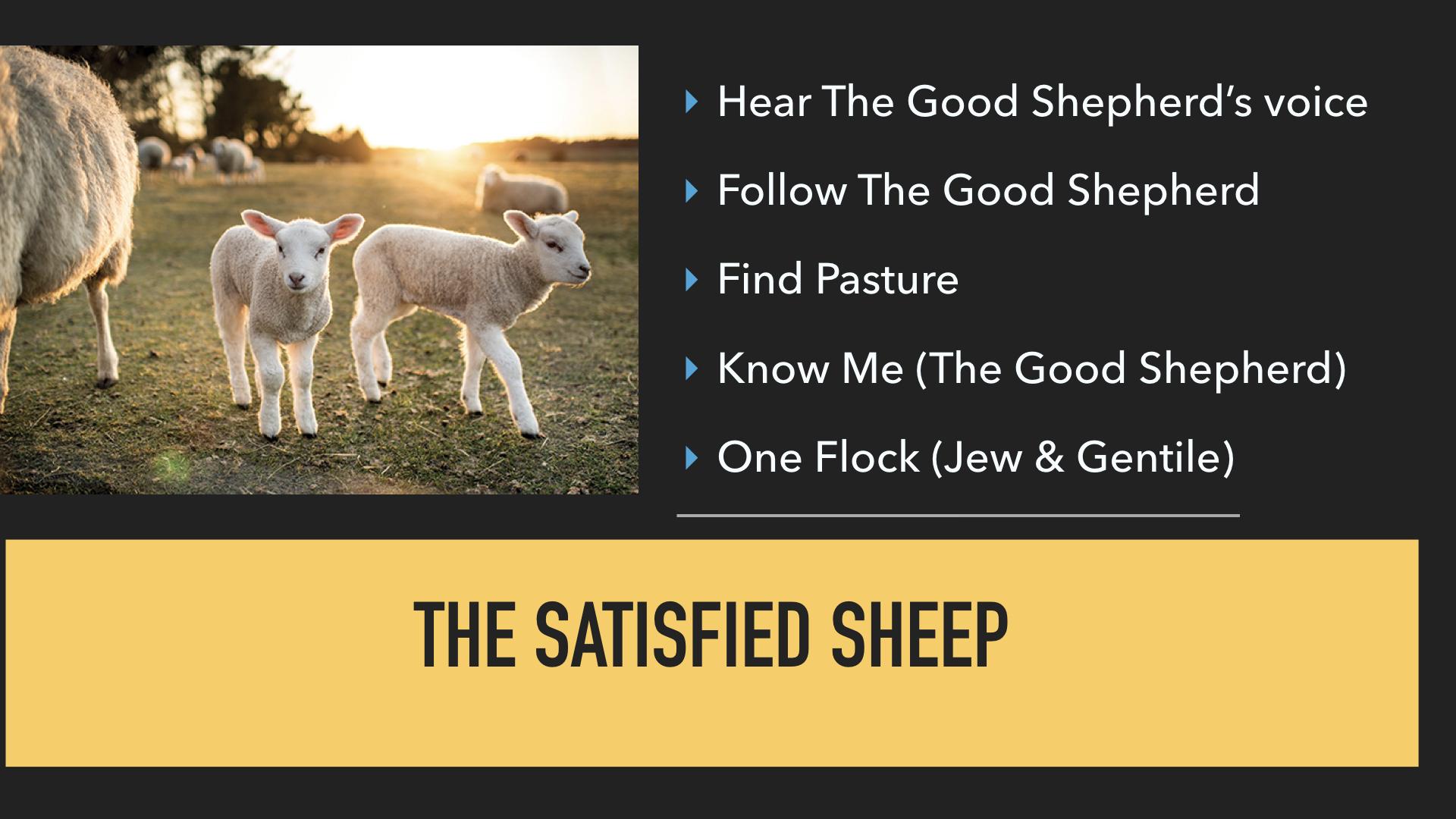 John 10:1-21 I AM The Good Shepherd .009.jpeg