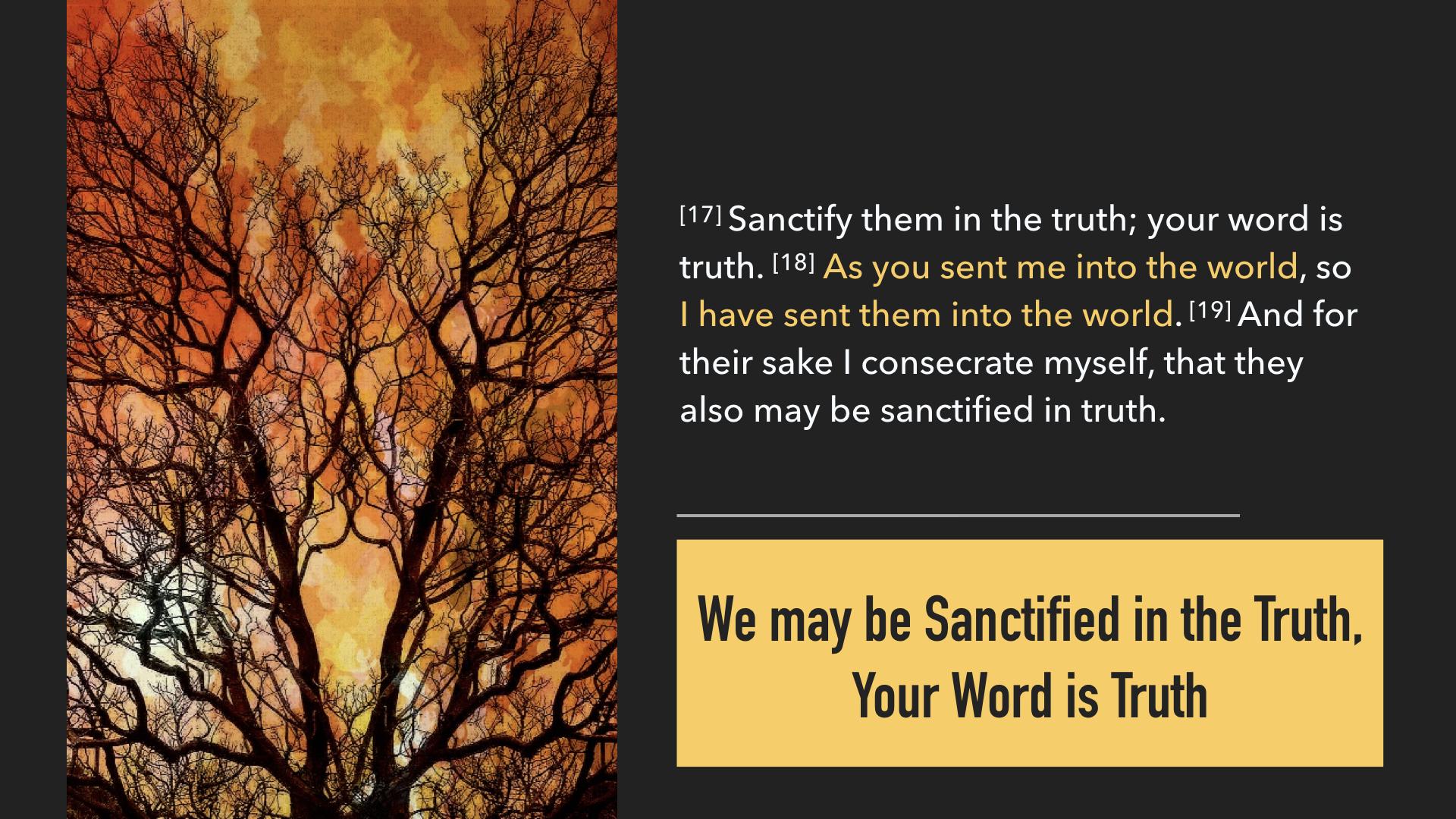 John 17:13-19.009.jpeg