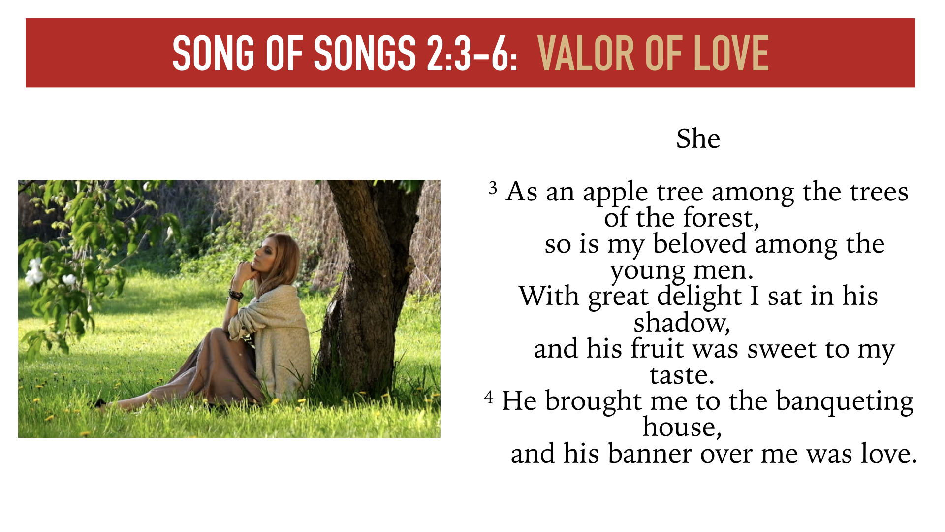 Song of Songs 1:15-2:7.005.jpeg