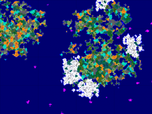 overviewMap-300x225.png