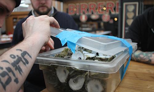 OystersPeeking.jpg