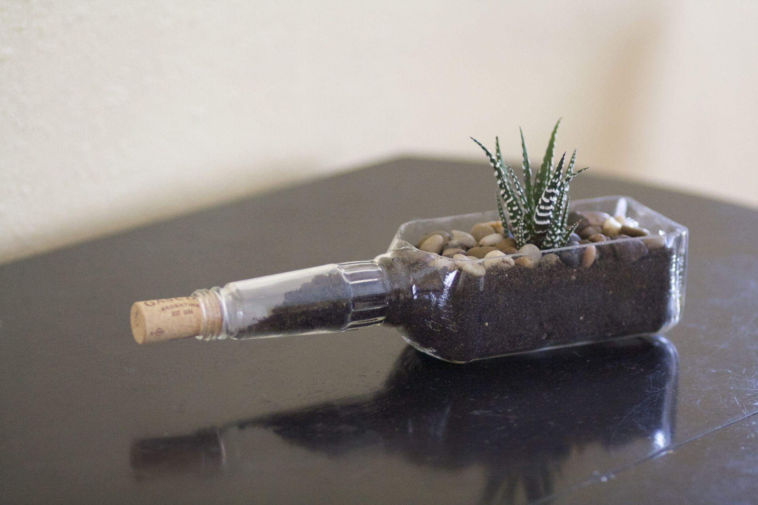 Whisky Bottle Planter.jpg