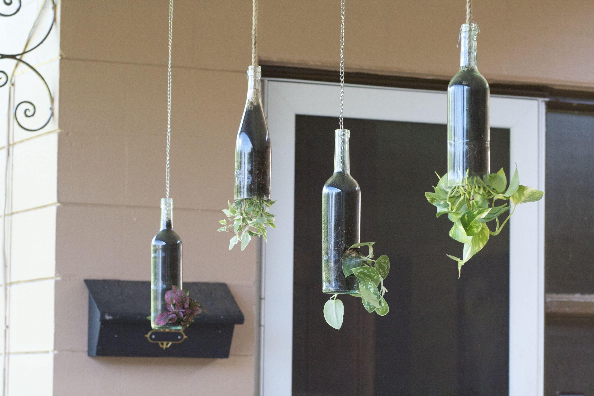 Hanging Wine Bottles.jpg